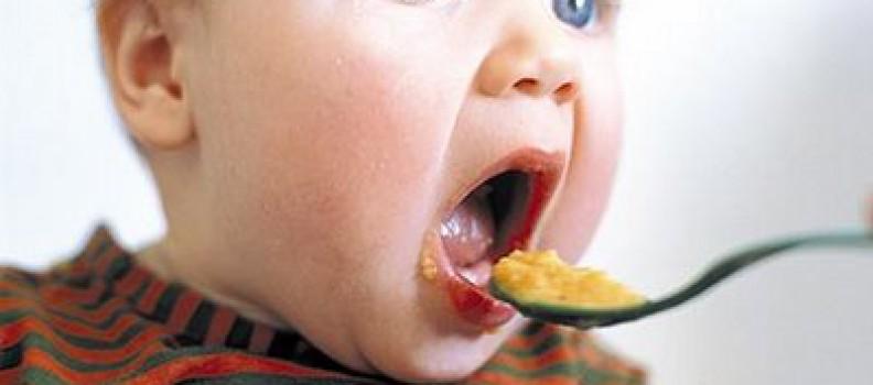 Sus primeros alimentos ¿Con qué carne empezar?